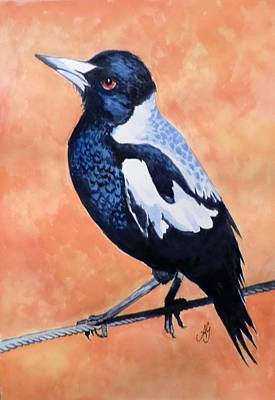 Painting - Magpie by Anne Gardner