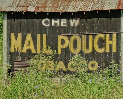 Mail Pouch Barn Photograph - Mail Pouch Tobacco Barn by Dan Sproul