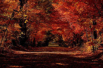 Berry College Photograph - Main Drive by Jason Blalock