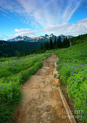 Anenome Photograph - Majestic Trail by Mike Dawson