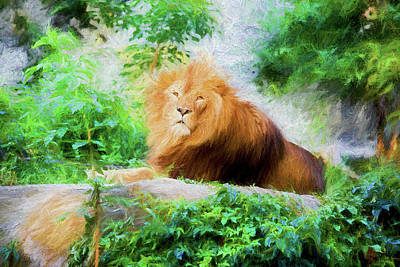 Colored Pencil Abstract Photograph - Male Lion by Artur Bogacki
