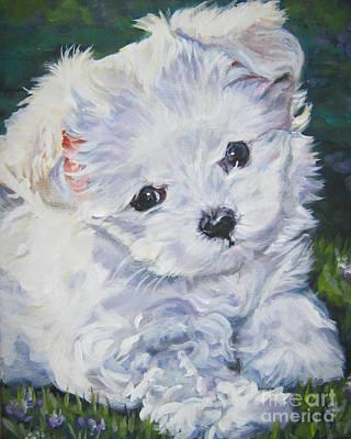 Maltese Painting - Maltese by Lee Ann Shepard
