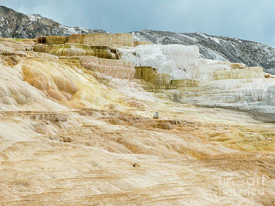 Photograph - Mammoth Hot Springs by Rod Jones