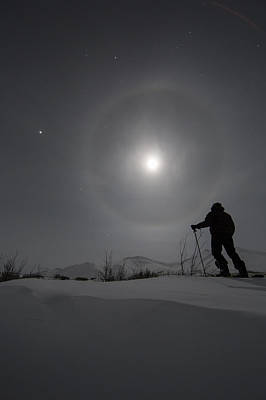 Bright Appearance Photograph - Man Snowshoeing Along The Dempster by Robert Postma