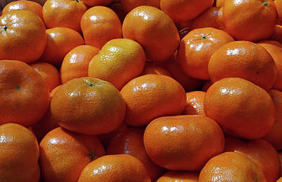 Photograph - Mandarin Oranges by David Pantuso