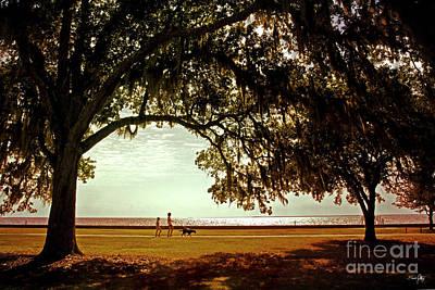 South Louisiana Photograph - Mandeville Lakefront by Scott Pellegrin