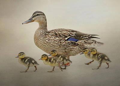March Of The Ducklings Art Print by Fraida Gutovich