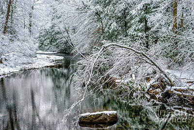 Art Print featuring the photograph March Snow Cranberry River by Thomas R Fletcher
