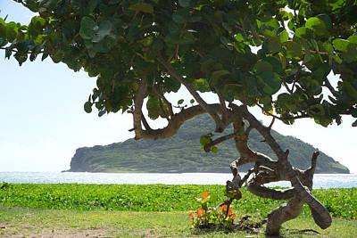 Photograph - Maria Island Saint Lucia by Daniel Jean-Baptiste
