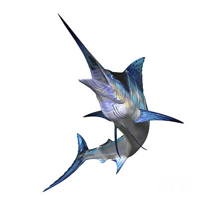 Tropical Fish Digital Art - Marlin by Corey Ford