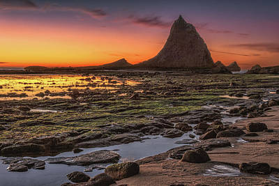 Photograph - Martin's Beach 2 by Laura Macky