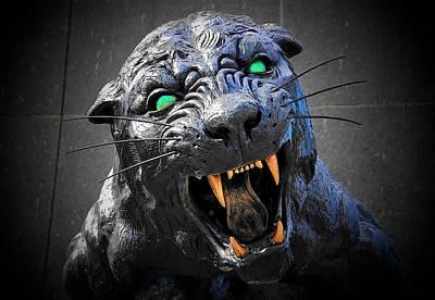 Photograph - Mascot by John Schneider