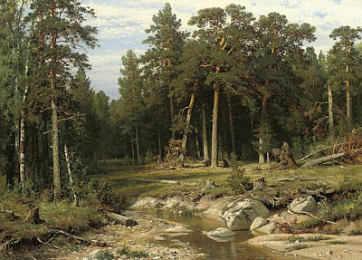 Russian Art Painting - Mast Pine Forest In Viatka Province by Ivan Shishkin