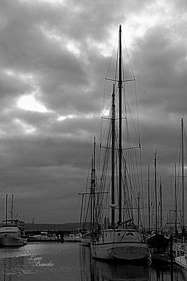 Photograph - Masts by Lynn Bawden