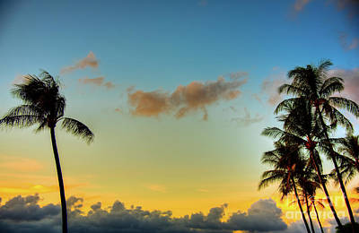 Photograph - Maui Palm Sunrise by Kelly Wade