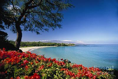 Mauna Kea Beach Art Print by Dana Edmunds - Printscapes
