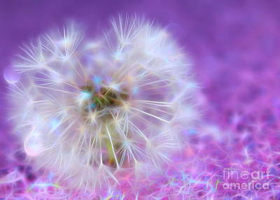 Floral Digital Art Digital Art Digital Art - May Your Wish Come True by Krissy Katsimbras