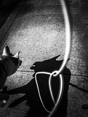 German Shepherd Photograph - Me And My Shadow by Heather Joyce Morrill
