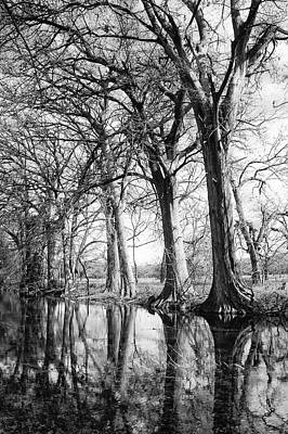 Photograph - Medina River by Brian Kinney