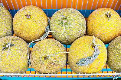 Cantaloupe Photograph - Melons by Tom Gowanlock