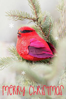 Photograph - Merry Christmas Red Bird by Deb Buchanan