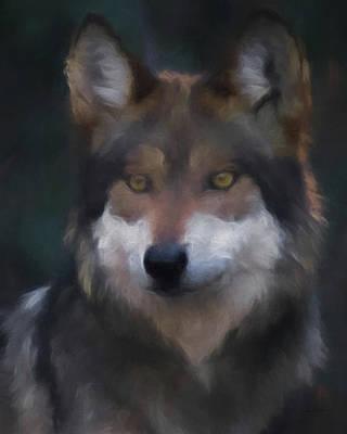 Digital Art - Mexican Grey Wolf Da by Ernie Echols