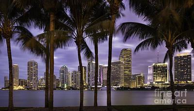 Photograph - Miami Twilight by Brian Jannsen