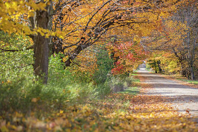 Photograph - Michigan Autumn Road  by John McGraw