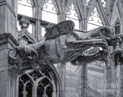 Photograph - Milan Cathedral Gargoyle In Black And White by Gregory Dyer