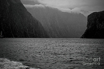 Photograph - Milford Sound, New Zealand by Elaine Teague