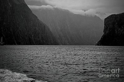 Photograph - Milford Sound, New Zealand by Elaine Teague