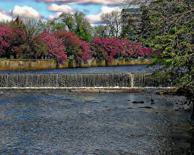 Photograph - Mill River Park by Anthony Dezenzio