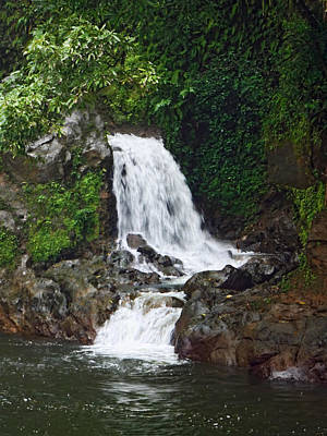 Photograph - Mini Waterfall by Pamela Walton