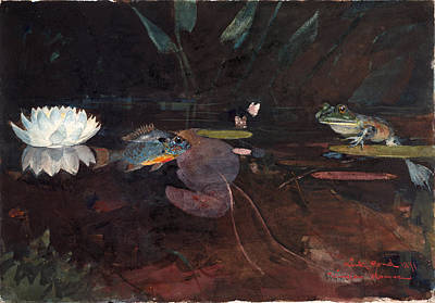 Winslow Homer Drawing - Mink Pond by Winslow Homer
