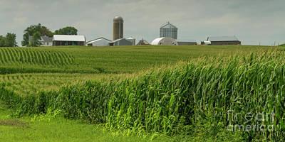 Photograph - Minnesota Farm Scene by Garry McMichael