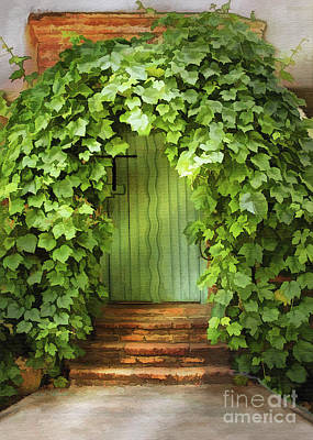 Photograph - Mission Ivy Door by Sharon Foster
