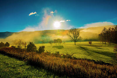Photograph - Mist Rising by Steven Ainsworth