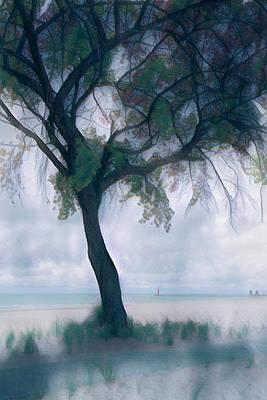 Photograph - Misty Morning At The Lake by Debra and Dave Vanderlaan