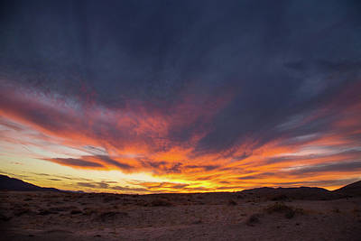 Photograph - Mojave Sunset by Kunal Mehra
