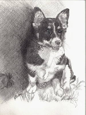 Molly Drawing - Molly by Nancy Rucker