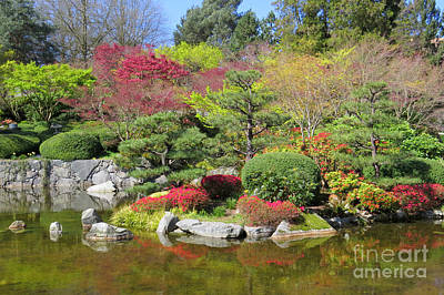 Photograph - Momiji Gardens by Frank Townsley