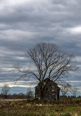 Freehold Photograph - Monmouth Battlefield by Steven Richman