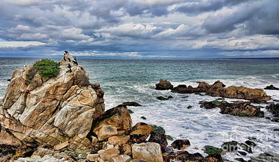 Photograph - Monterey Bay by Gina Savage