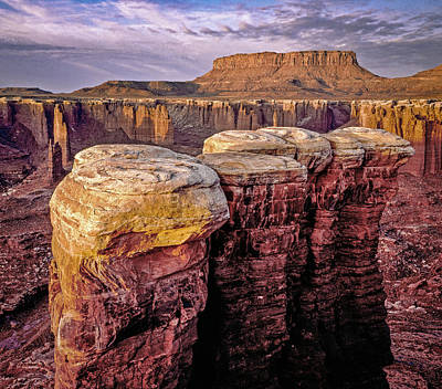Photograph - Monument Basin, Canyonlands by Gary Shepard