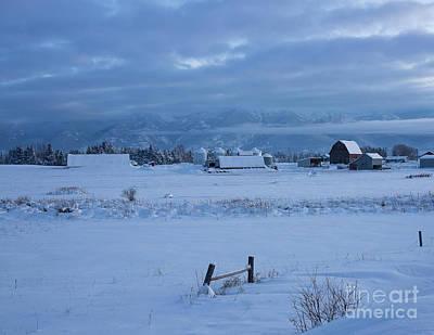 Photograph - Moody Blues by Idaho Scenic Images Linda Lantzy
