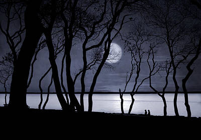 Photograph - Moonlit Stroll by Robin-Lee Vieira