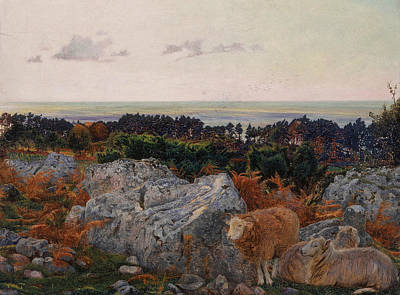 Daniel Painting - Morecambe Bay From Warton Crag by Daniel Alexander Williamson