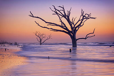 Morning At Botany Bay Plantation Art Print by Rick Berk