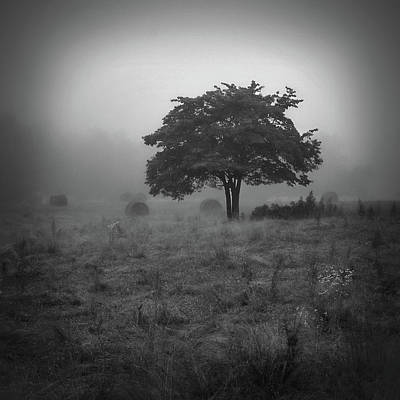Photograph - Morning Fog by Bill Martin
