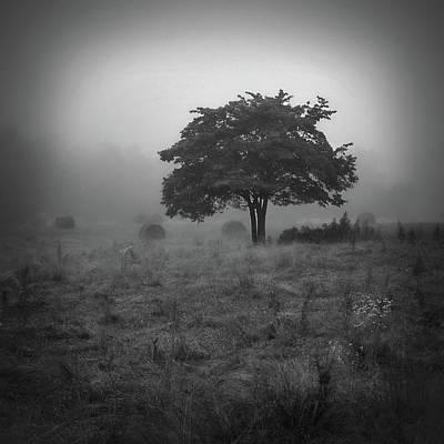 Photograph - Morning Fog by Bill Martin